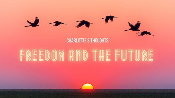 Charlotte's Thoughts: Freedom and TheFuture